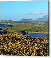 Clogher Beach And The Three Sisters Canvas Print
