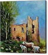 Clonmore Castle  Ireland Canvas Print