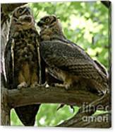 Close As Brothers Canvas Print