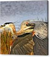 Close Flyby Canvas Print