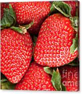 Close Up Of Delicious Strawberries Canvas Print