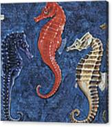 Close-up Of Five Seahorses Side By Side  Canvas Print