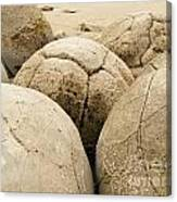 Closeup Of Famous Spherical Moeraki Boulders Nz Canvas Print