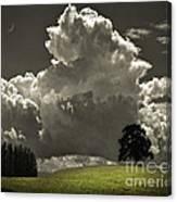Cloud No.9 Canvas Print