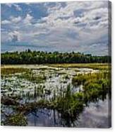 Cloud Reflection In Maine Marsh Canvas Print