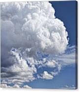 Cloud Study 114 Canvas Print
