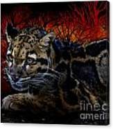 Clouded Leopard Two Canvas Print