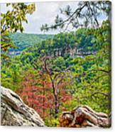 Cloudland Canyon State Park Georgia Canvas Print