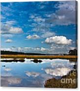 Clouds Flying Clouds Floating Canvas Print