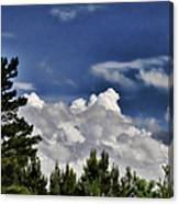 Clouds Like Mountains Behind The Pines Canvas Print