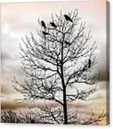 Cloudy Day Blackbirds Canvas Print