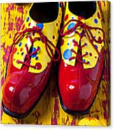 Clown Shoes And Balls Canvas Print