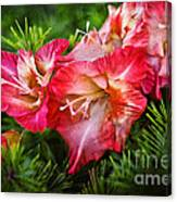 Cluster Of Beauty Canvas Print