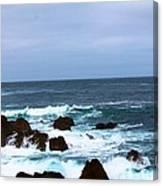 Coast Of California # 20 Canvas Print