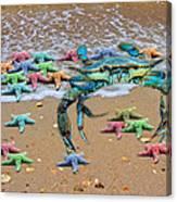 Coastal Crab Collection Canvas Print