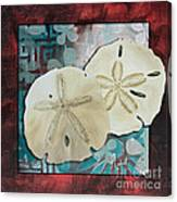 Coastal Decorative Shell Art Original Painting Sand Dollars Asian Influence I By Megan Duncanson Canvas Print