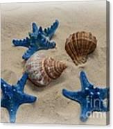Coastal Dreams Canvas Print