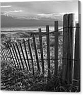 Coastal Dunes In Black And White Canvas Print