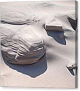 Coastal Dunes In Holland 1. Canvas Print