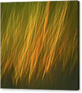 Coastal Grass Canvas Print