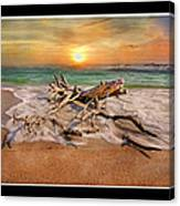 Coastal Morning  Canvas Print