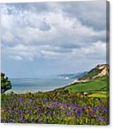 Coastal Overlook From Eype Canvas Print