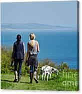 Coastal Path Walk Canvas Print