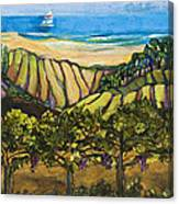 California Coastal Vineyards And Sail Boat Canvas Print