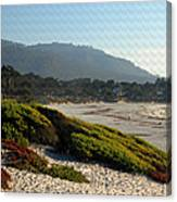 Coastal View - Ice Plant II Canvas Print