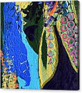 Coat Of Many Colors Canvas Print