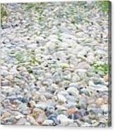 Cobblestones Canvas Print