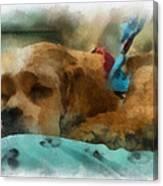 Cocker Spaniel Photo Art 06 Canvas Print