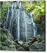 Coco Falls - El Yunque Canvas Print
