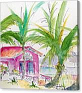 Coco Plum Canvas Print