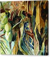 Coconuts And Palm Fronds 5-16-11 Julianne Felton Canvas Print