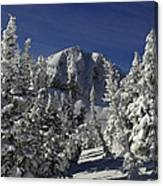 Cody Peak After A Snow Canvas Print