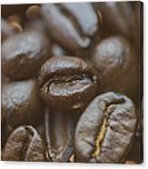 Coffee Bean Macro Canvas Print