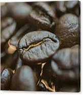 Coffee Beans Macro 3 Canvas Print