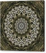 Coffee Flowers 6 Olive Ornate Medallion Canvas Print
