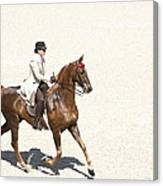 Coffee Saddlebred Canvas Print