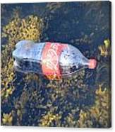 Coke Among The Seaweed Canvas Print