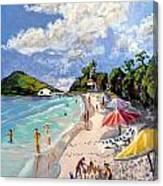 Coki Beach Canvas Print