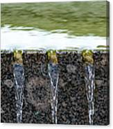 Cold And Clear Water - Featured 3 Canvas Print