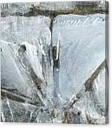 Cold Calculation Canvas Print