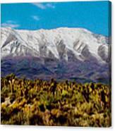 Cold Creek Canyon Nv Canvas Print