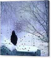 Cold Crow Canvas Print