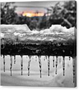 Cold Morning Light Canvas Print