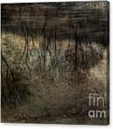 Cold Reflection 2 Canvas Print