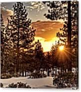 Sun Star Canvas Print