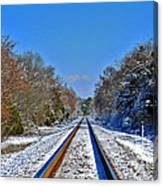 Cold Tracks Canvas Print
